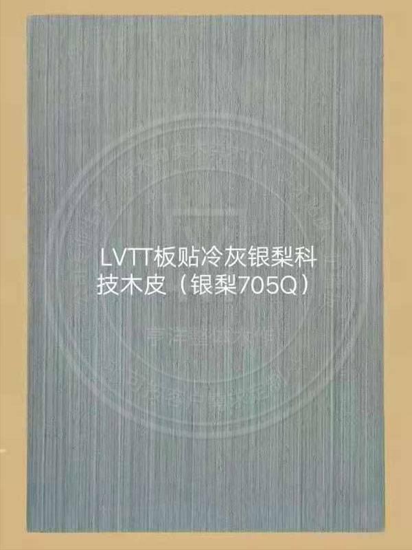 LVTT板貼冷灰銀梨科技木皮(銀梨705